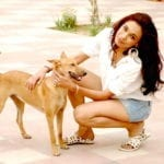 Paws For A Cause shoot with street-desi dogs